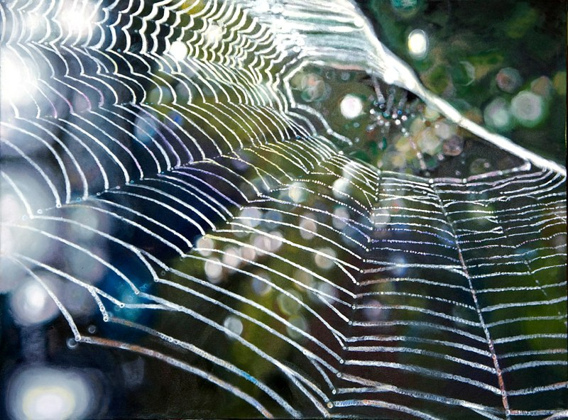 Dew on Webs: flys' eye view of a spider web
