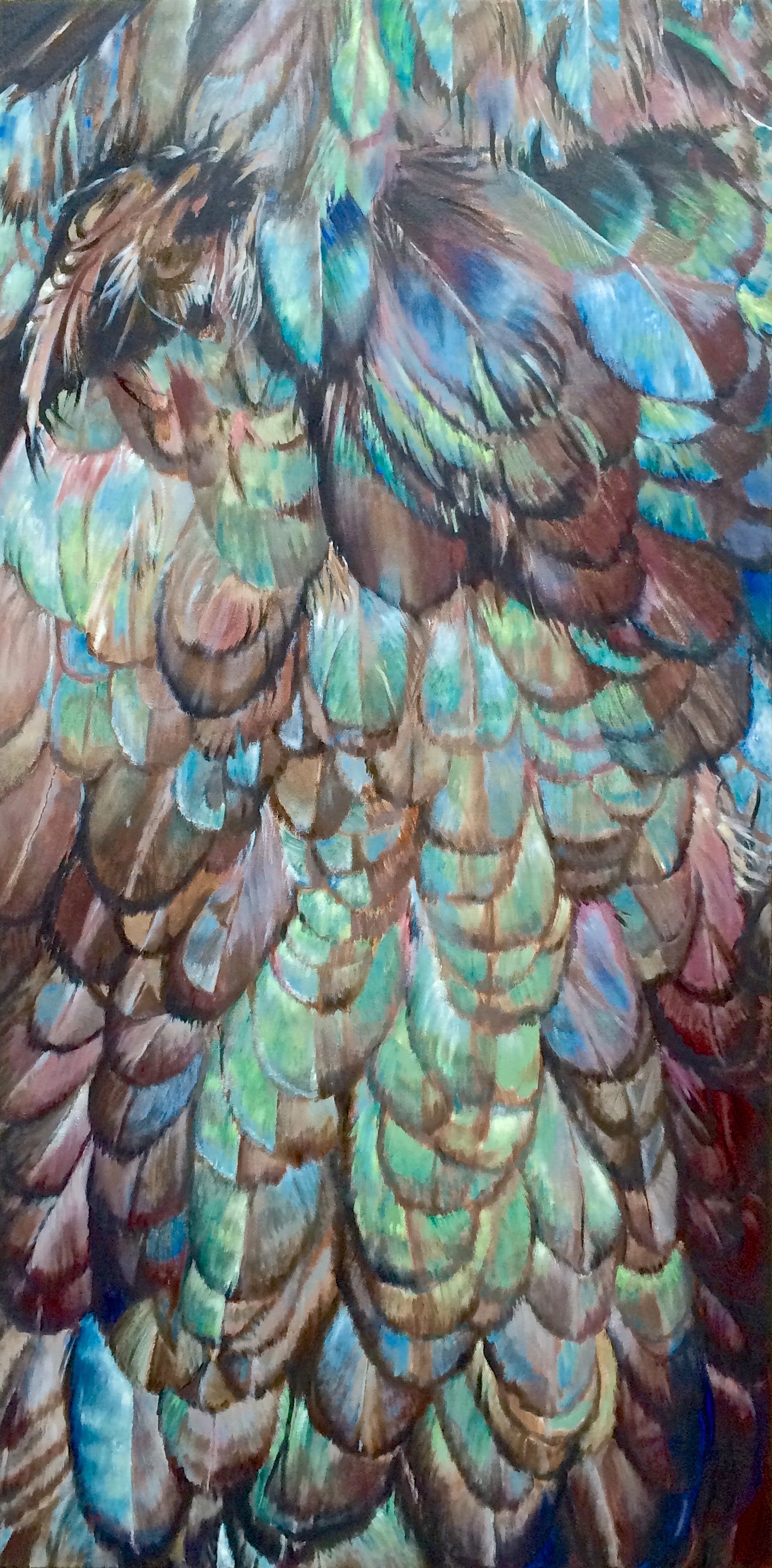 Eggs and Feathers: Black chicken feathers turn iridescent in the sun